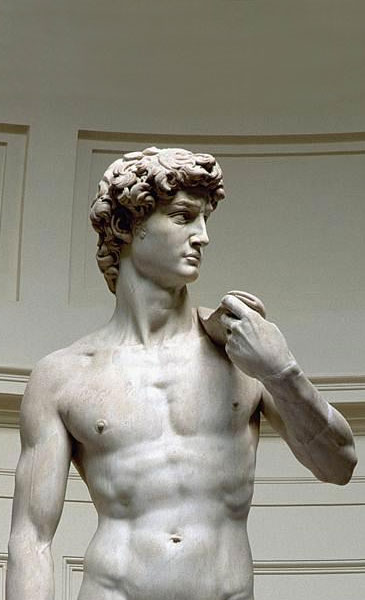 humanism david michelangelo That humanism since the dawn of the renaissance has played an historic role   to the courageous resoluteness portrayed in michelangelo's imposing david,.